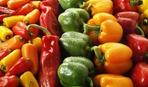 """""""Девочки"""" - в салаты, """"мальчики"""" - в рагу: как выбрать болгарский перец"""
