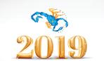 Как встречать 2019 год по знаку Зодиака: Скорпион