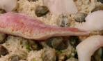 Кус-кус с морепродуктами