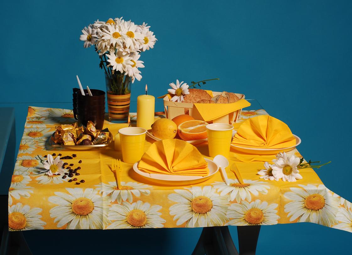 Одноразовый набор: скатерть, салфетки, посуда