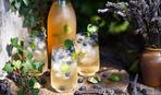 Какие напитки наиболее полезны?