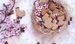 Пасхальное печенье: курочки