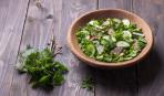 Салат из дикорастущих трав - весенний тренд