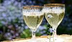 Сенсация: шампанское снижает напряжение в сердце!