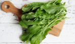 Шпаргалка кулинара: как выбрать салат и в чём различия