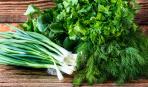 Как правильно хранить зелень: 5 способов