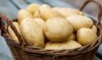 Меню-эконом: 5 лучших блюд из картофеля