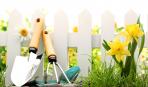Что делать в саду и на огороде в июне