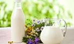 Молоко для домашнего йогурта: 3 секрета выбора