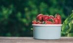 Запасы на зиму: как сушить клубнику
