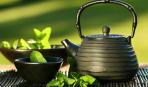 Мятный чай: свойства ароматного напитка