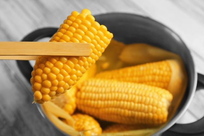 Кукуруза в тарелке