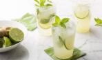 Освежающий мохито: 3 лучших рецепта по версии SMAK.UA