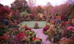 Великолепный сад в красных тонах
