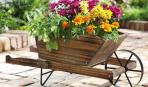 Оригинальные идеи цветочных клумб