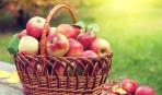 Яблочный спас – 2017: что категорически нельзя делать в этот день