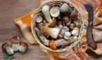 Как правильно чистить грибы: 5 проверенных секретов
