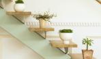 10 роскошных подставок для комнатных растений