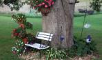 Как декорировать приствольные круги деревьев
