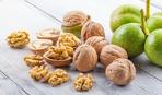 Пророщенный грецкий орех: уникальный рецепт молодости