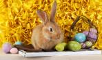 Пасха: интересная история пасхального кролика