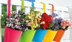 Как организовать цветник на балконе