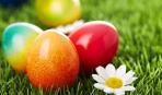 Как покрасить яйца натуральными красителями: оранжевый