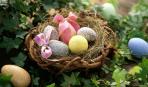 Пасхальный декор из яиц: идеи, которые вас вдохновят