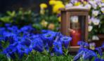 Поминальные дни: 10 важных правил поведения на кладбище