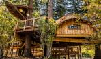 Дом на дереве: 10 потрясающих снимков