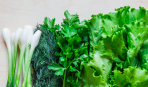 Полезна ли ранняя зелень: однозначный ответ диетолога