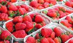 Чим полуниця та черешня можуть нашкодити здоров'ю (відео)