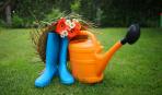 Работы в саду и огороде в июне: о чем нельзя забыть