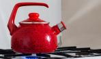 Наплитный чайник: обзор изделий украинского производства