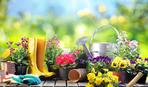 Лунный календарь садовода-огородника на июль