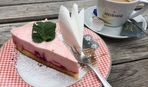 Пирог с малиной: 7 лучших рецептов по версии SMAK.UA