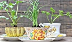 ТОП-10 креативных идей использования старой керамической посуды